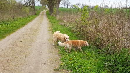 Wir besuchen Ines, Wiko und Bailey in Grömitz