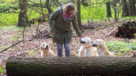 mit dem Mädels im Wald